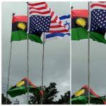GREAT BIAFRANS Profile Picture